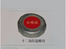 12角防盗螺栓